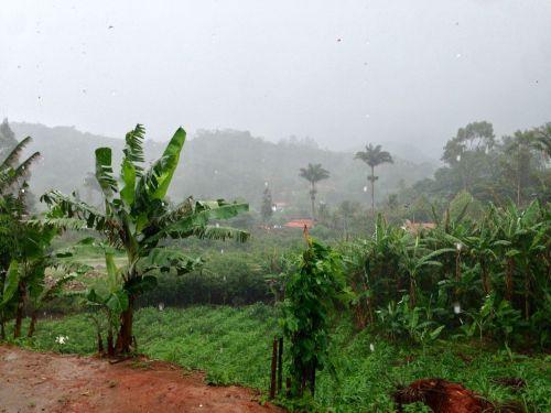 Segunda-feira começa com chuva no Ceará