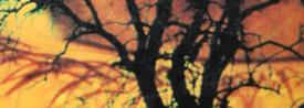 Libro Los ojos del dragón - Cine de Escritor