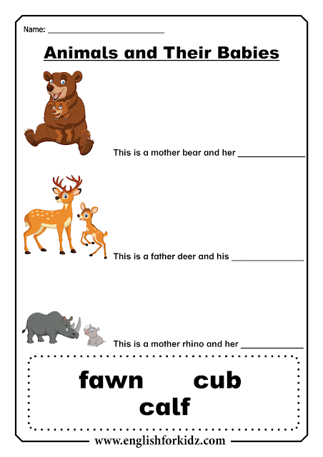 Baby animals - English ESL worksheets
