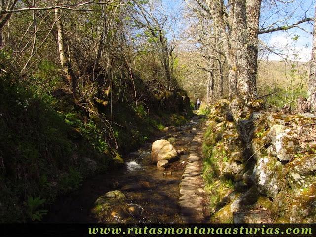 Camino a la Cascada de Sotillo con agua