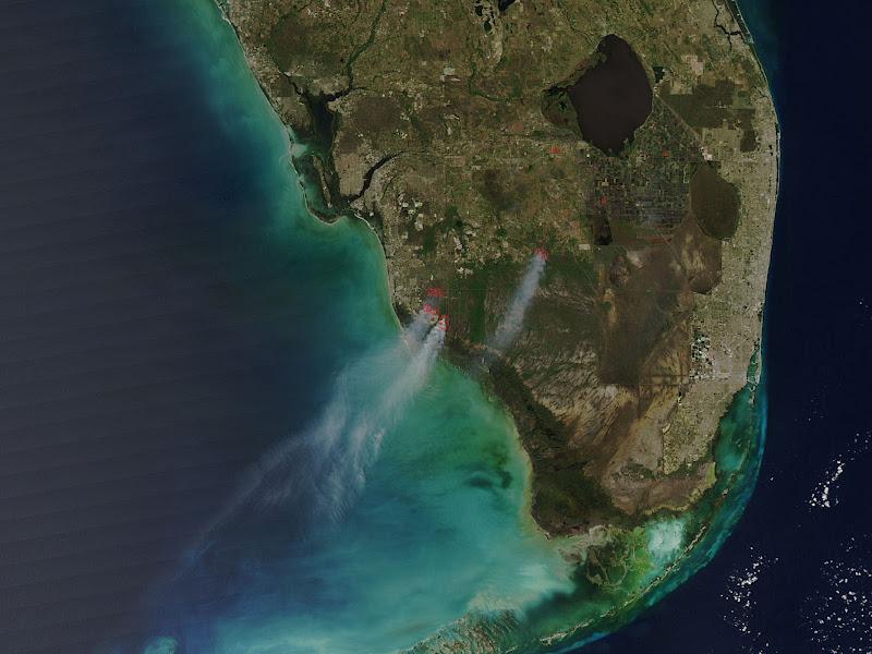 Những đám cháy rừng đã diễn ra ở phía nam Florida vào tuần trước, vệ tinh Aqua của NASA đã chụp được những cột khói cao vút từ không gian. Hình ảnh chụp vào ngày 23 tháng 3 cho thấy ba vụ cháy có nguyên nhân từ sấm sét của một cơn dông tố vào ngày 21 tháng 3. Dụng cụ đo quang phổ MODIS trên vệ tinh Aqua xác định được những vùng có mức nhiệt độ cao hơn khiến vụ cháy bùng phát mạnh mẽ hơn, được đánh dấu bằng đường nét đỏ trong ảnh này. Hình ảnh: NASA/Goddard/Jeff Schmaltz/LANCE/EOSDIS MODIS Rapid Response Team.