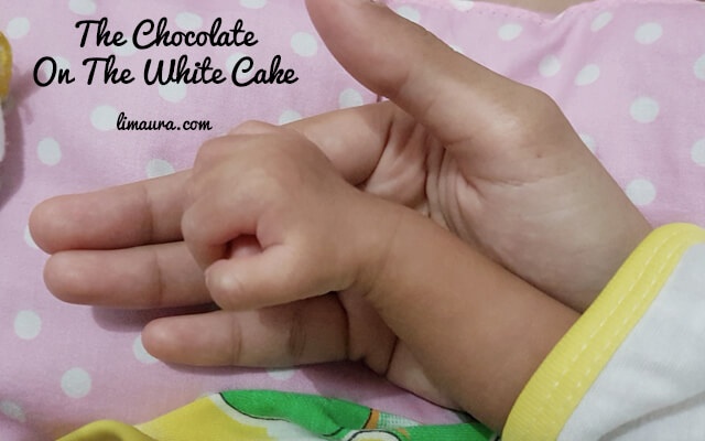 The Chocolate On The White Cake
