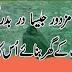 Is Shehar Mai Mazdor Jaisa Dar Badar Koi Nahi