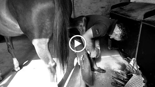 Thomas Morret Maréchal Ferrant Portraits Video par Ben Heine - Woody Horse Concept