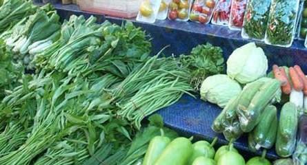 sayur mentah, bahaya sayur mentah