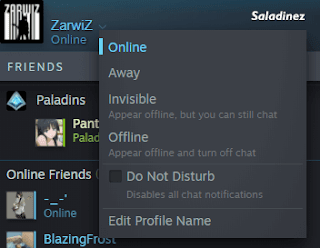 Profil Status Steam