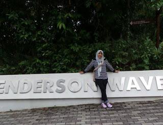 Dani di Henderson Wave Singapura