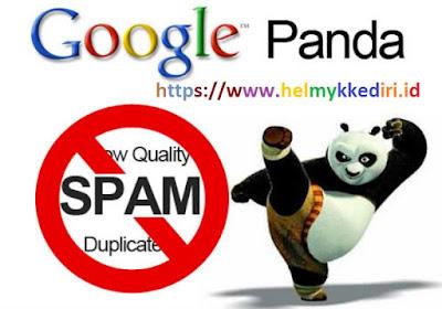 menghindari hukuman google panda 2019