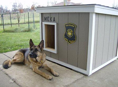modern dog house design