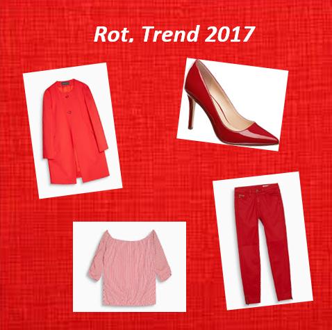 Gibt es die neusten Trends bereits im Online Shop?