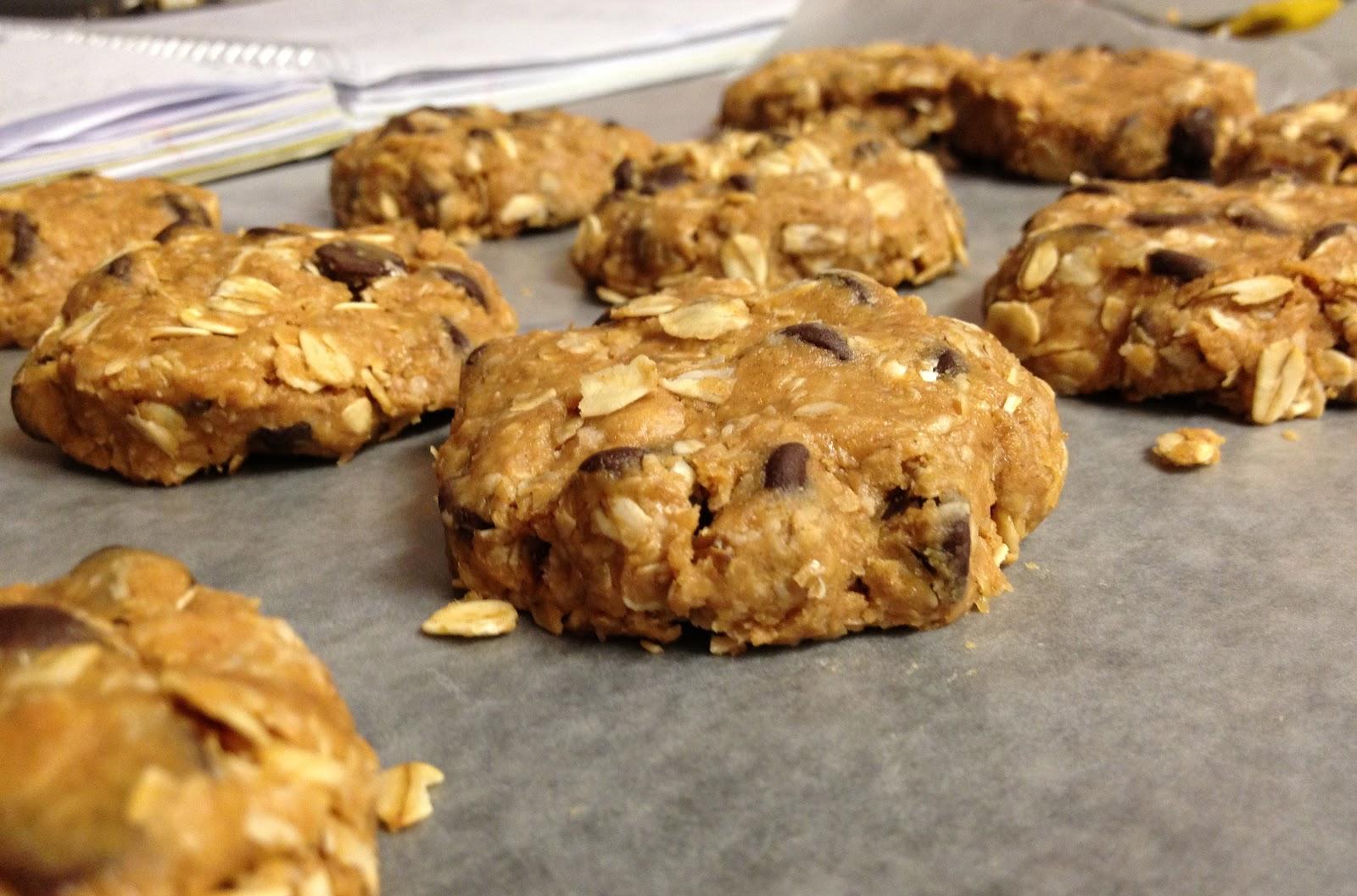 Gourmet Taste for the College Buds: No-Bake Breakfast Cookies