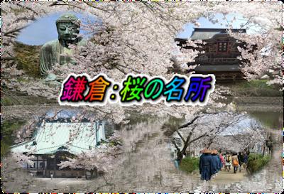 鎌倉:桜の名所