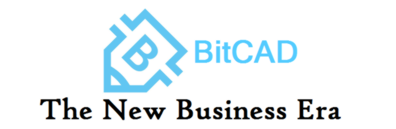 Great Support from BitCad for Businesses Blockchain Based