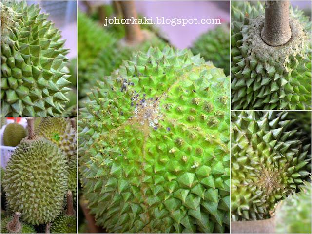 Tips-Untuk-Mengenalpasti-Buah-Durian-Musang-King-Rajah-Kunyit-Mao-Shan-Wang