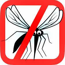 التخلص من الناموس ( البعوض ) بطريقة طبيعية فعالة و آمنة