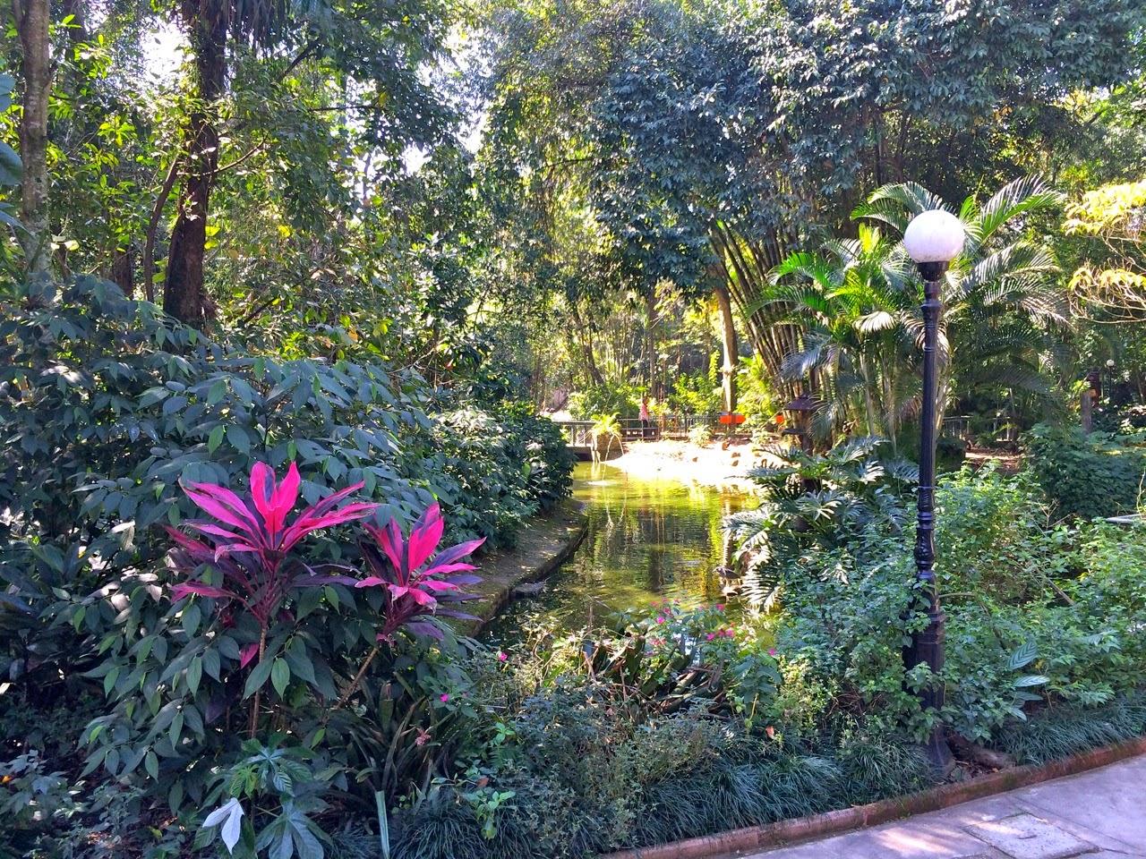 6e32b51c06 O Orquidário Municipal de Santos é um parque zoobotânico e fica localizado  no bairro José Menino. Há cerca de 450 animais no local