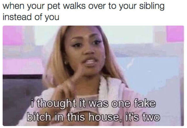 Hilarious Memes That Describe The Relation Between Sisters. (29 Pics)