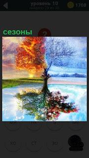 Сезоны, характеризующие две  части года разделены пополам