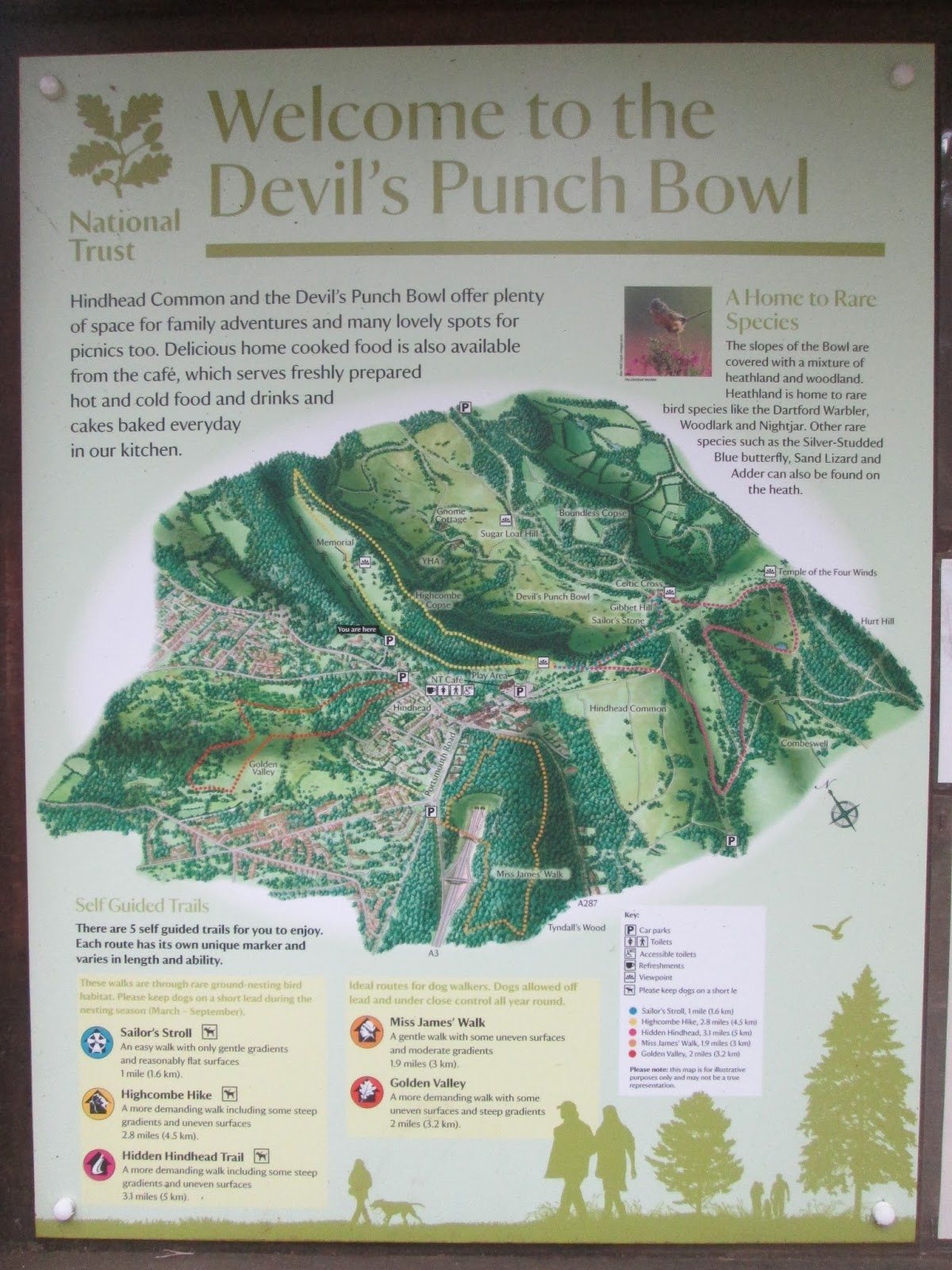 The Devil's Punchbowl map information and walk guide Sophie and Lily