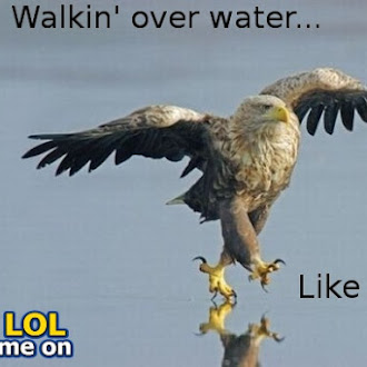 Walkin' Over Water Like a Boss