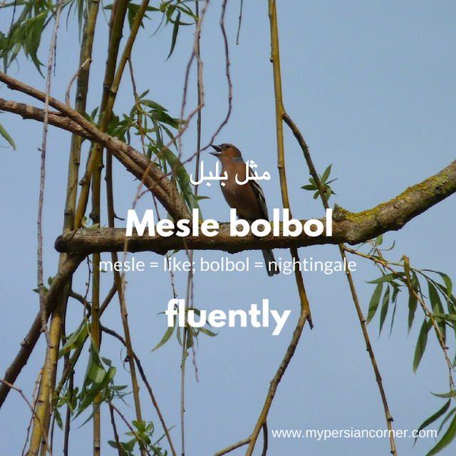 Mesle bol bol means fluently in Persian Farsi language