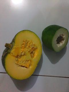 buah labu dan pepaya muda di ramu menjadi sayur nikmat dan lezat