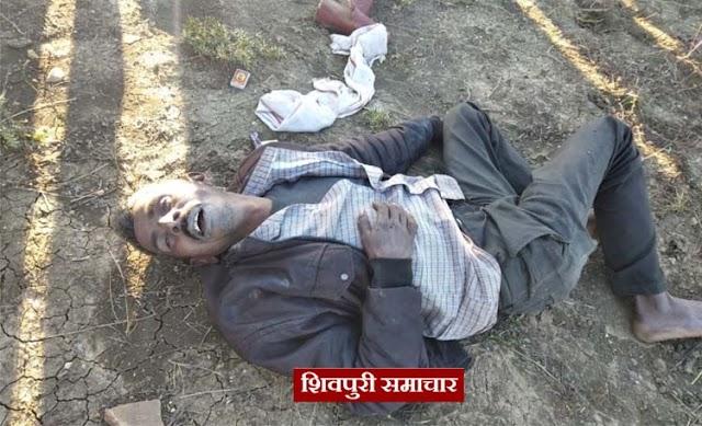 खेत में पडी मिली सदिंग्ध लाश,पास में था दारू का क्वार्टर और जहर की शीशी   Shivpuri news