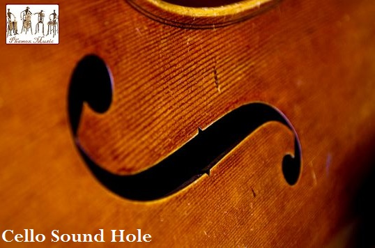 Like the violin, the cello has two sound holes cut into the body of the instrument. The holes allow the sound to travel out of the instrument more effectively.