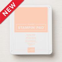 https://www2.stampinup.com/ecweb/product/147108/petal-pink-classic-stampin-pad