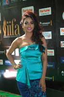 Pooja in beautiful Half Top at IIFA Utsavam Awards 2017  Day 2  Exclusive 12.JPG