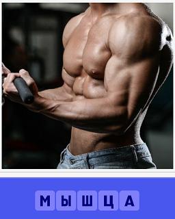 мужчина занимается спортом и видны мышцы в напряжении