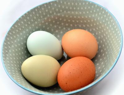 Kuliner, makanan, masakan, membuat telur asin, telur asin, tips memasak,