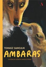 http://lubimyczytac.pl/ksiazka/4851710/ambaras