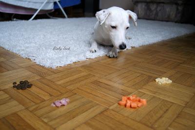 nagrody dla psa, nagradzanie jedzeniem