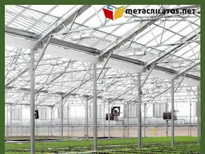 Invernaderos de policarbonato: Una buena elección