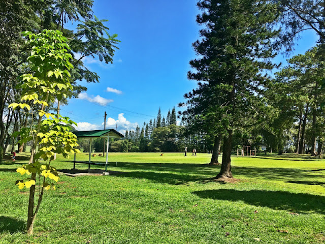 Del Monte's Club House, Golf Course and Country Club situated in Sitio Cawayanon, Barangay San Miguel, Manolo Fortich