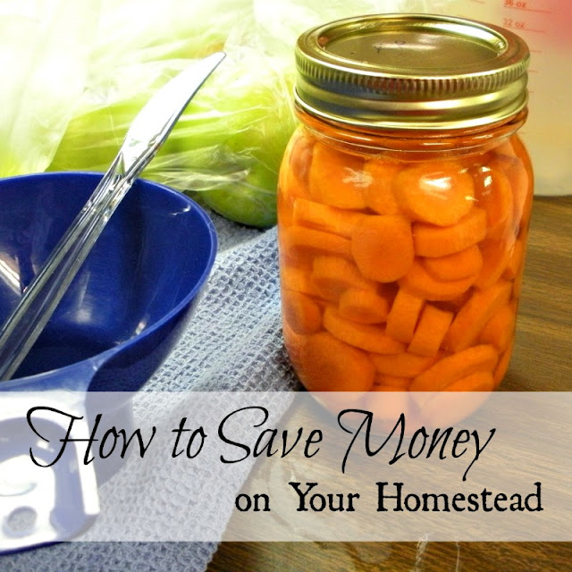 How to Save Money on Your Homestead