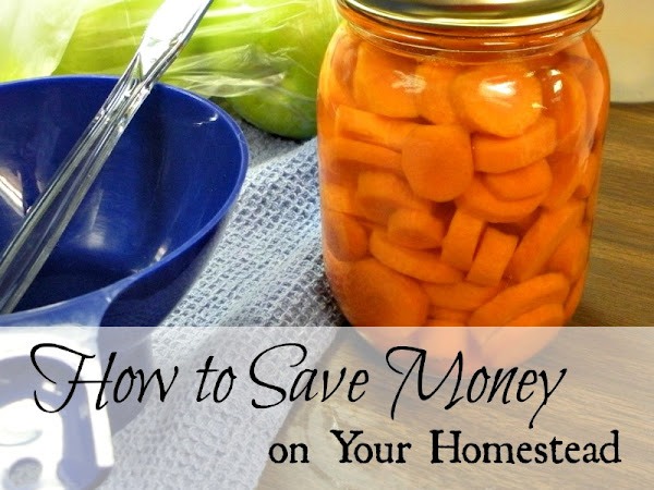 How to Save Money on Your Homestead, a Guest Post