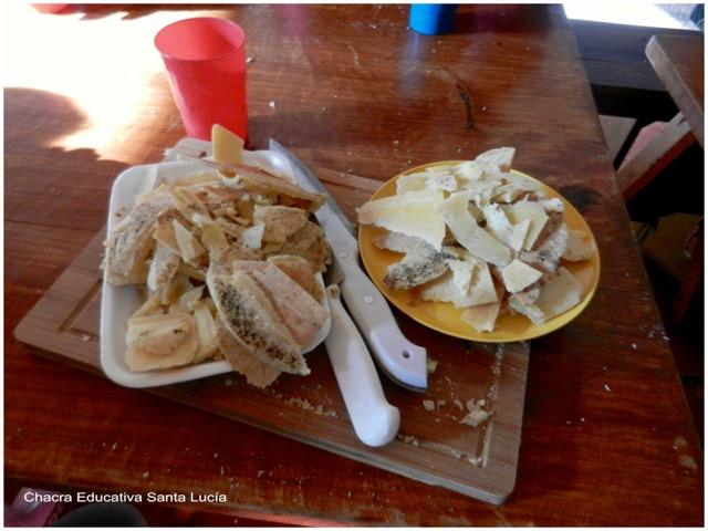 Cáscara del queso - Chacra Educativa Santa Lucía