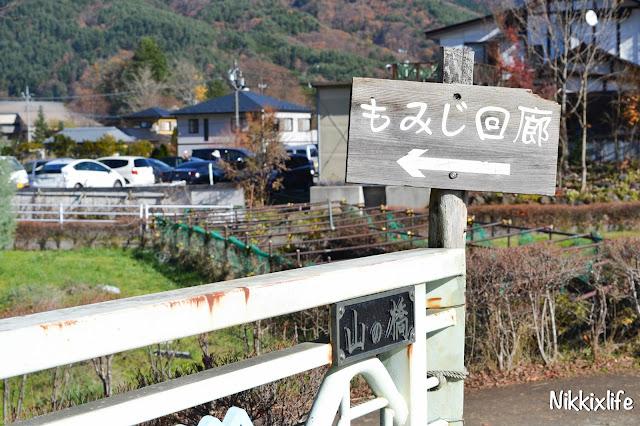 【日本。河口湖】紅葉回廊:觀賞紅葉和富士山的好地點! 10