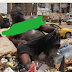 Overweight Man Rummages Through Rubbish Dump For Food In Cameroon (Photos)