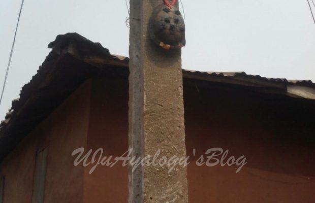 Residents tie 'Juju' to electric pole to prevent officials from disconnecting them [PHOTOS]