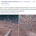 GRAPHIC: Nigerian journalist shares photos of corpses sticking out of graves at Imota Cemetary