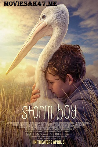 Storm Boy (2019) Full English Movie Download 480p 720p 1080p WEB-DL
