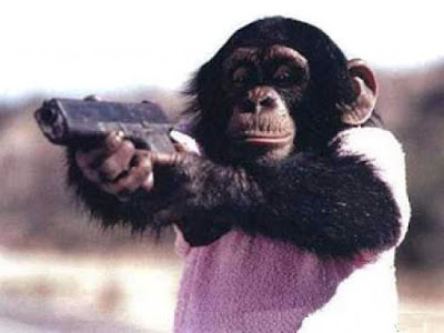 Make my day monkey with a gun