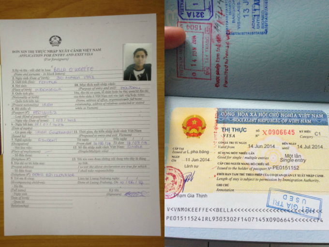 vietnam visa application form