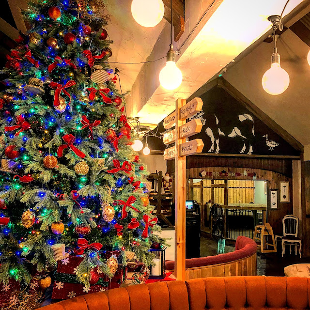 Bluestone at Christmas - a festive, wonderful winter wonderland. A review of Bluestone Resort in Wales, by blogger, photographer and writer Mandy Charlton. Discover why we loved our stay at Bluestone and why it's a wonderful place for a family holiday or weekend break in the UK.