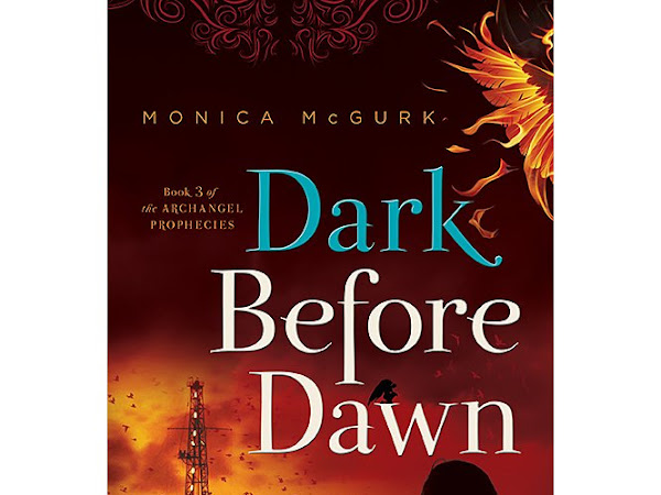 Dark Before Dawn {A Book Review and Giveaway} #HolidayGiftGuide