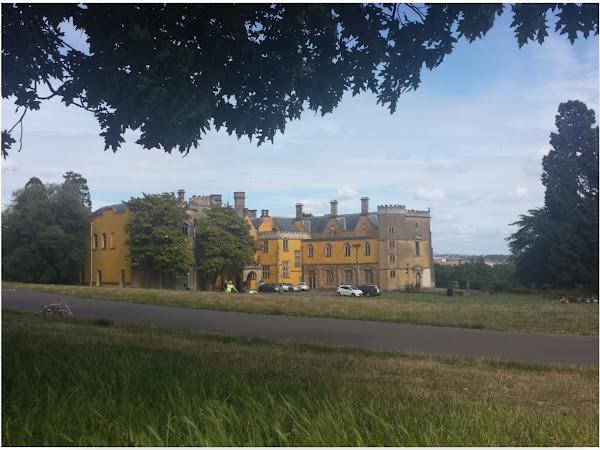 Picnic at Ashton Court