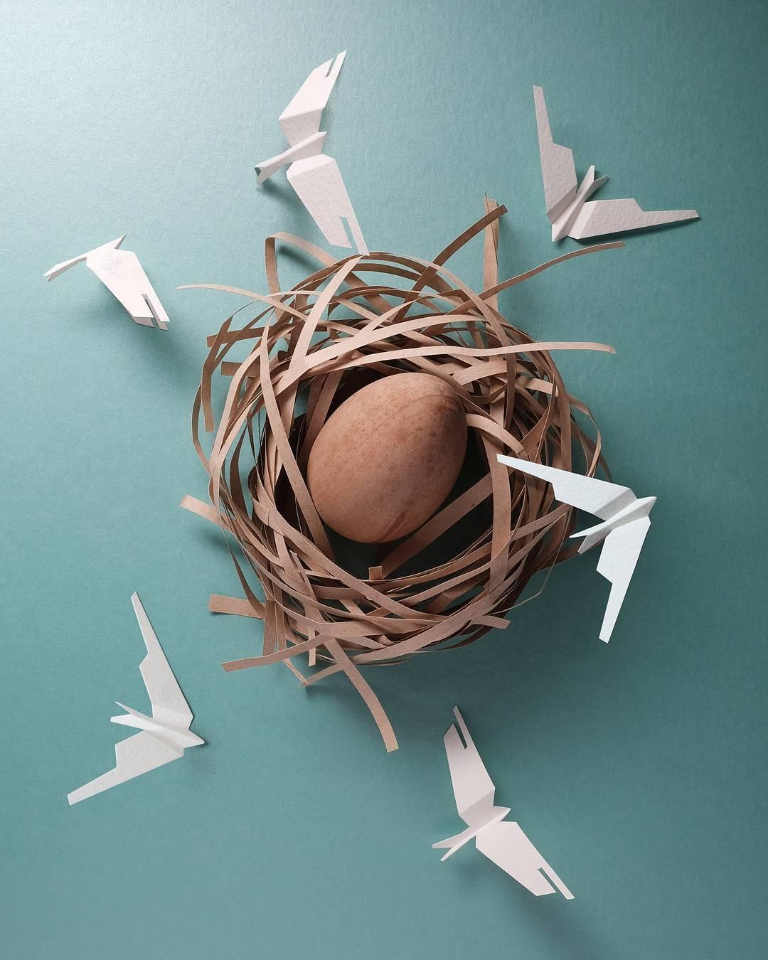 paper cut illustration nest